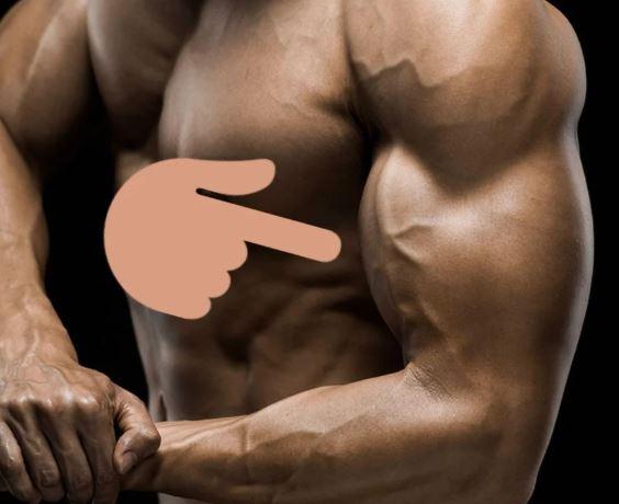 почему не растут мышцы рук