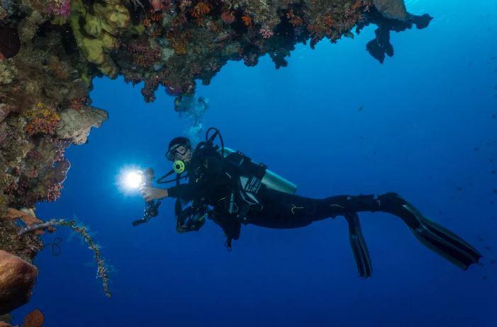 подводный мир бунакена